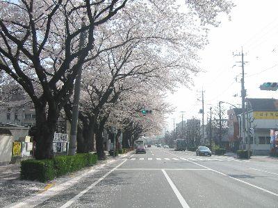 FushimiStreet