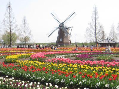 あけぼの山農業公園のオランダ風車