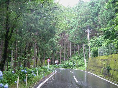 国道299号志賀坂