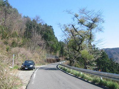 埼玉県道11号熊谷小川秩父線・定峰峠の西